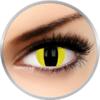 Phantasee Fancy Cheetara - lentile de contact colorate galbene Crazy pisica anuale 17 mm - 360 purtari (2 lentile/cutie)