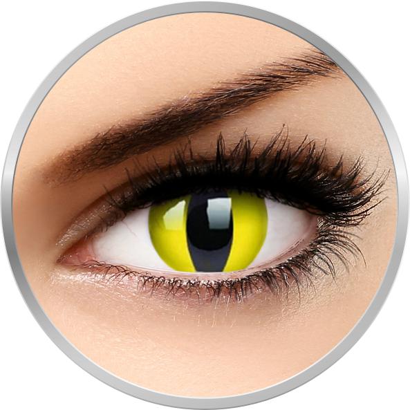 Phantasee Fancy Yellow Cat - lentile de contact colorate Crazy galbene anuale - 360 purtari (2 lentile/cutie)