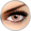 Phantasee Flash Elixor Sienna Brown - lentile de contact colorate caprui 90 de purtari (2 lentile/cutie)