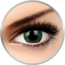 Basic Green - lentile de contact colorate verzi trimestriale - 90 purtari (2 lentile/cutie)