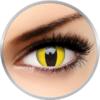 ColourVUE Crazy Cat Eye - lentile de contact colorate galbene anuale - 360 purtari (2 lentile/cutie)