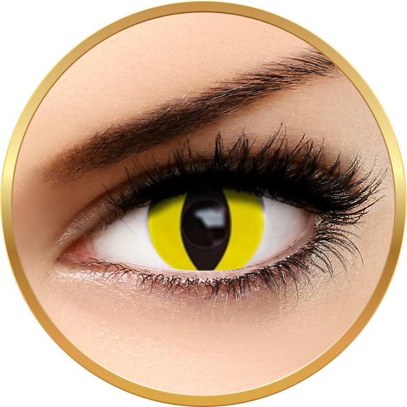 Auva Vision Fantaisie Yellow Cat - lentile de contact Crazy pentru Halloween anuale - 365 purtari (2 lentile/cutie)
