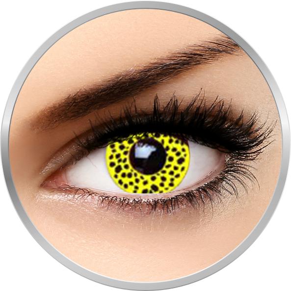 Auva Vision Fantaisie Yellow Cheetah - lentile de contact Crazy pentru Halloween anuale - 365 purtari (2 lentile/cutie)
